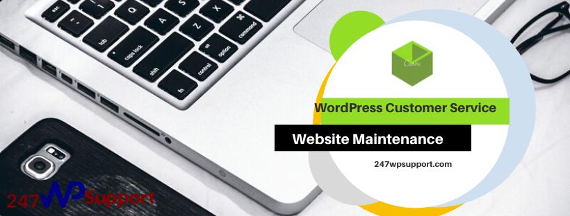 WordPress Customer Service Online Team