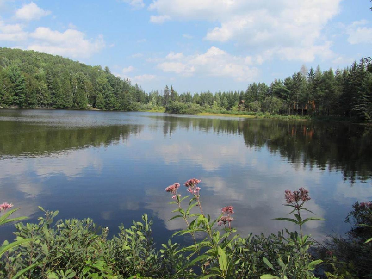 Superbe terrain  pc accès au Lac Gérard