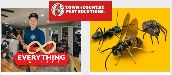 Bee Exterminators, Pest control Rochester, Syracuse,
