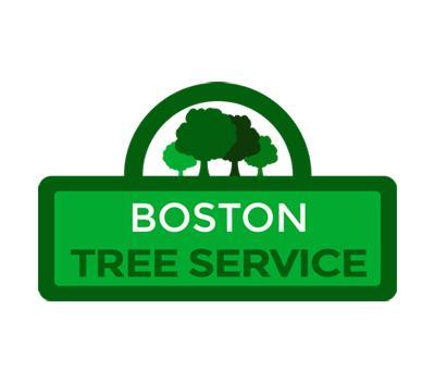 Boston Tree Service