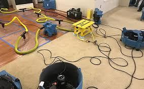 Black Mold Removal in Yakima