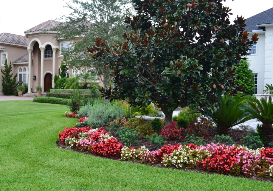 Lawn Care services Seattle, WA for best gardening services